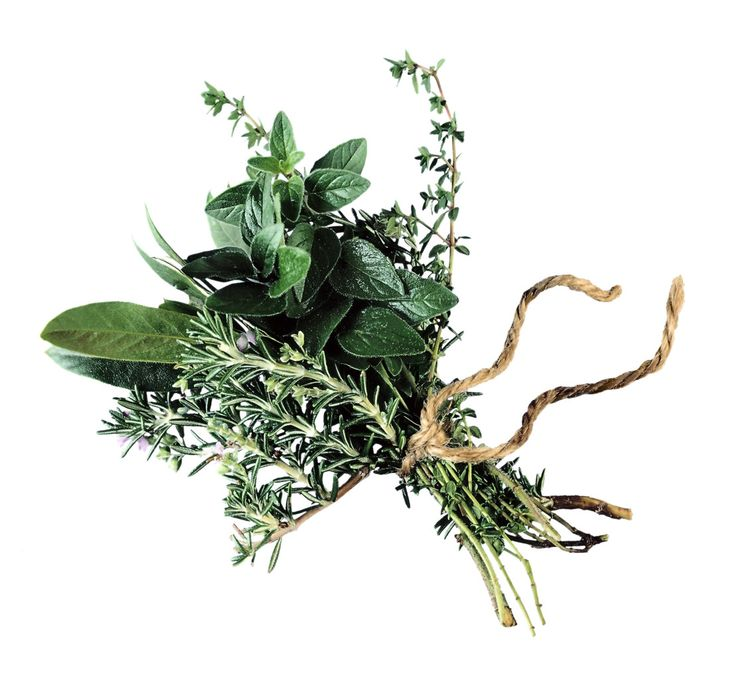 How to make fresh herb tincture