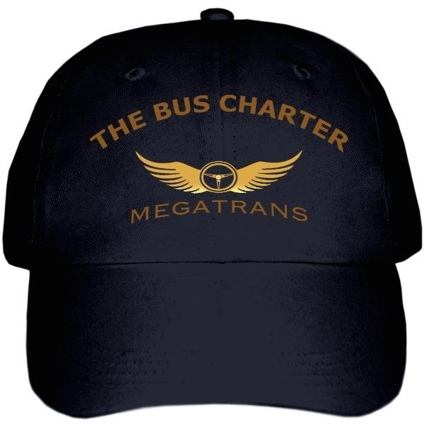 www.megatransturizm.com