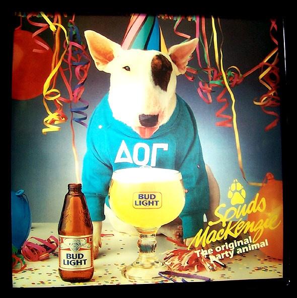 Spuds Mckenzie Bud Light dog