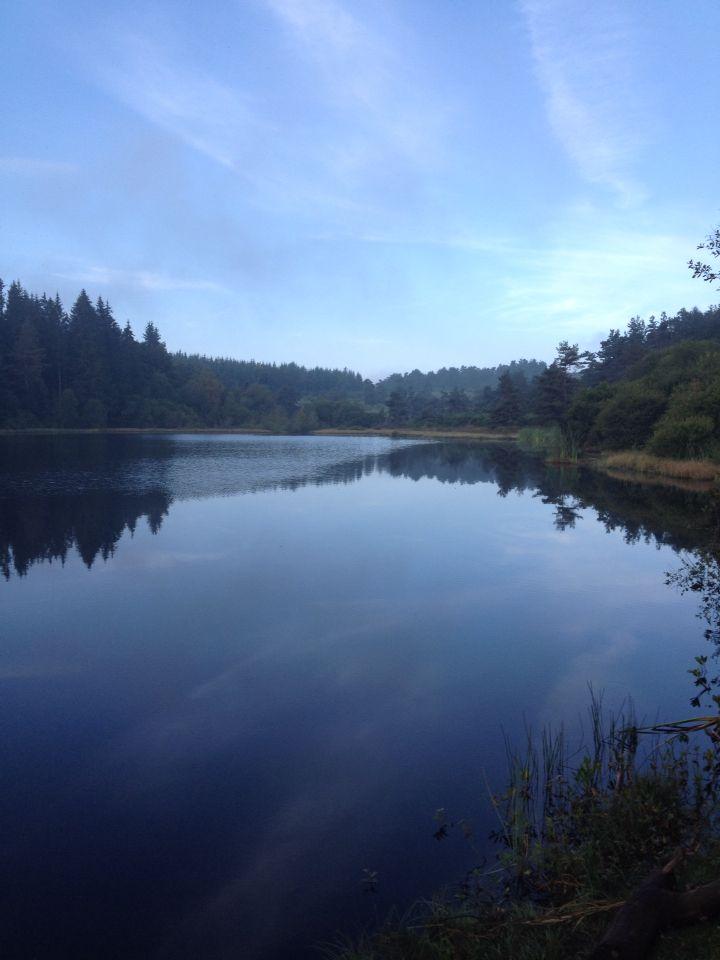 Un paysage digne d'un lac canadien !