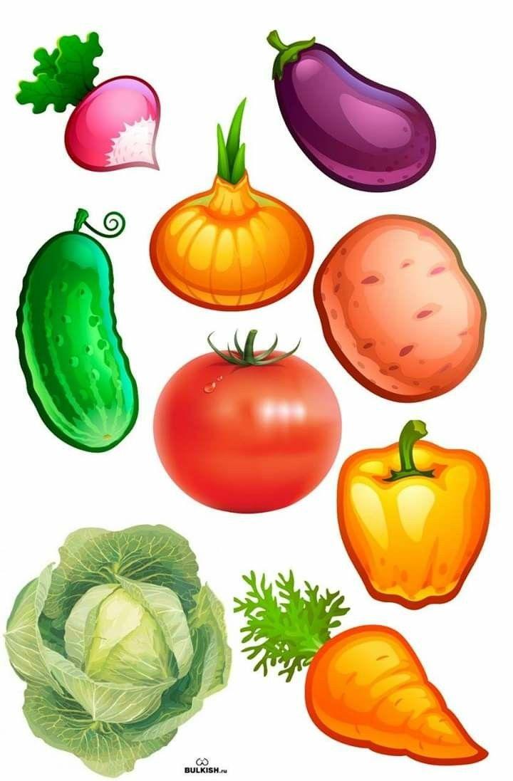 Вырезать картинки с овощами для детей