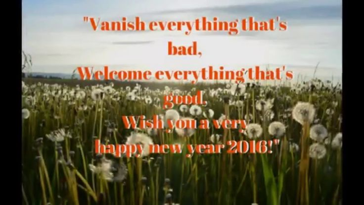 Wish You Happy New Year 2016 Greetings/Wishes/Quotes/SMS/Messages for Wh...