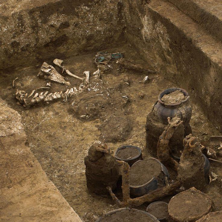 Quiz archéologie sur l'exercice du pouvoir chez les gaulois