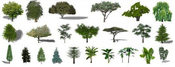 Plantas y árboles para Sketchup