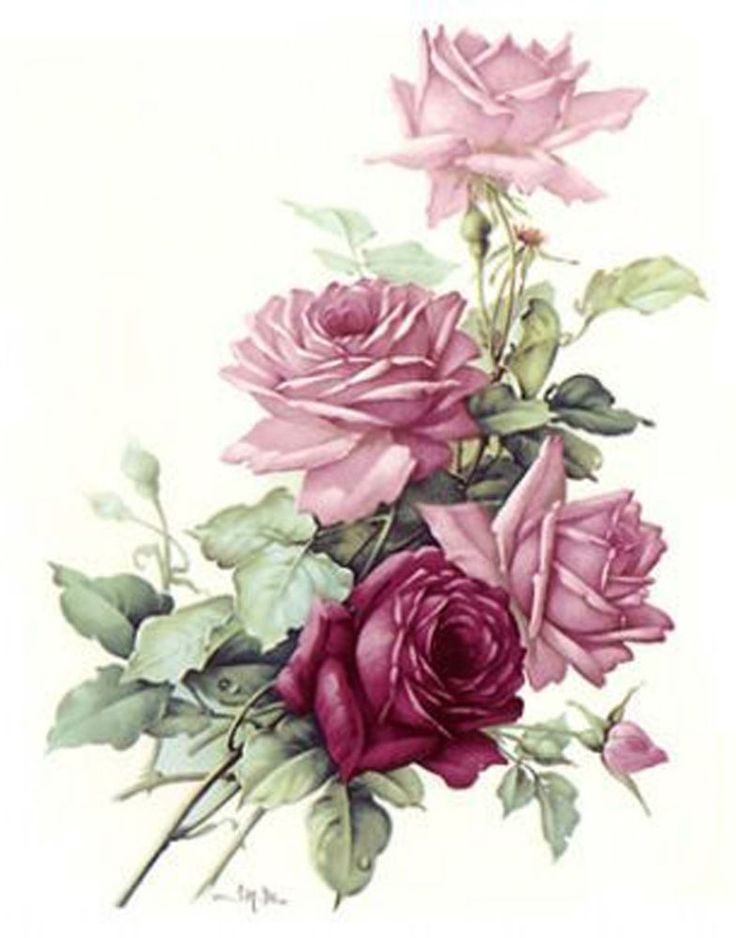 inspiration for my leg tattoo.  San Do Pink Rose Bouquet Flower Select-A-Size Ceramic Waterslide Decals