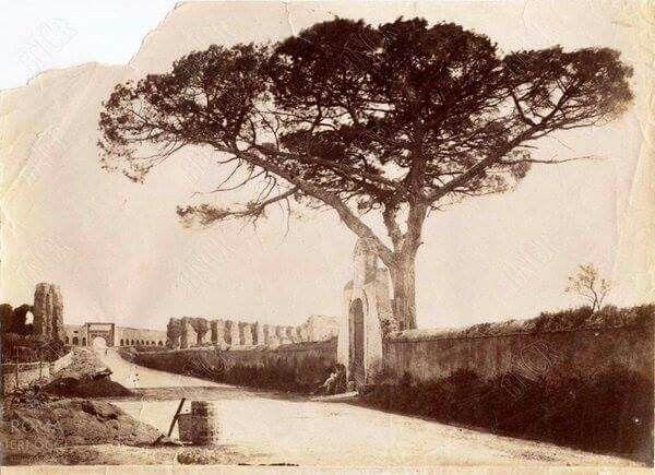 Via tuscolana 1890