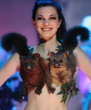 HELLO POSSUMS: This entry in the Bizarre Bra category of the World of WearableArt Awards – modelled by Sophie Petley – won Lorneville designer Denise Laurie second place in the first-timers section