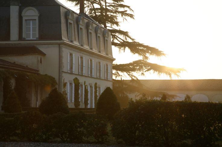Envie de découvrir le Château Guiraud? Il vous suffit de réserver votre visite sur Wine Tour Booking