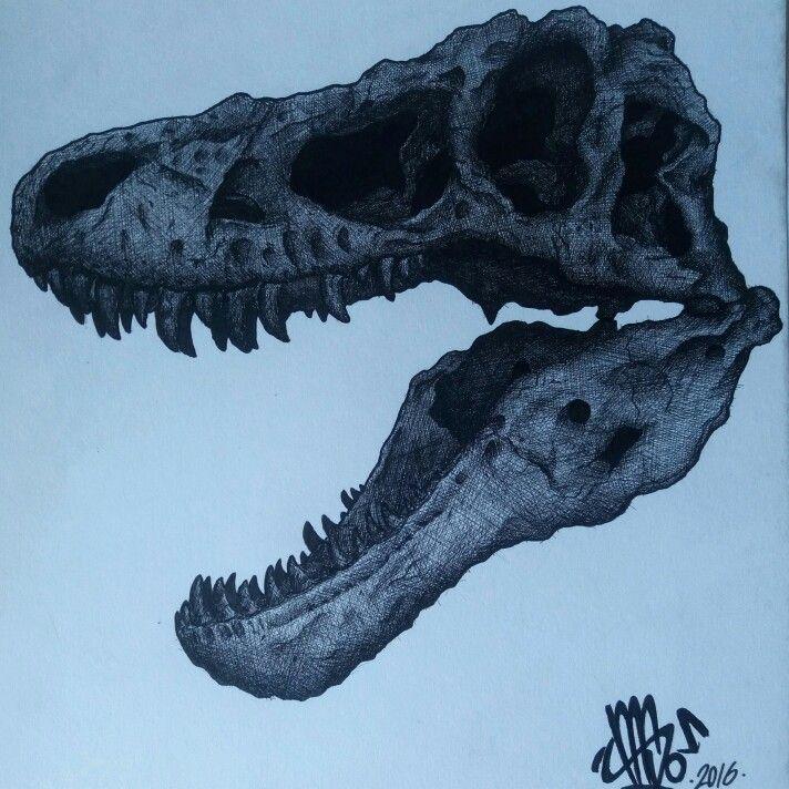 Tarbosaurus skull in fine liner