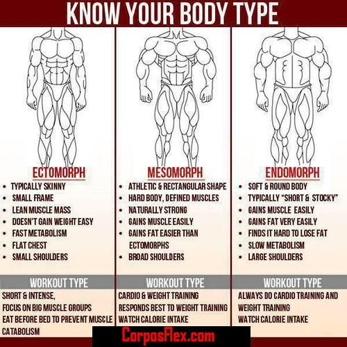 How to chose the right workout type for your body type #corposflex #suplementos http://www.corposflex.com/en/100-whey-gold-standard-2273g-5lbs-optimum-nutrition