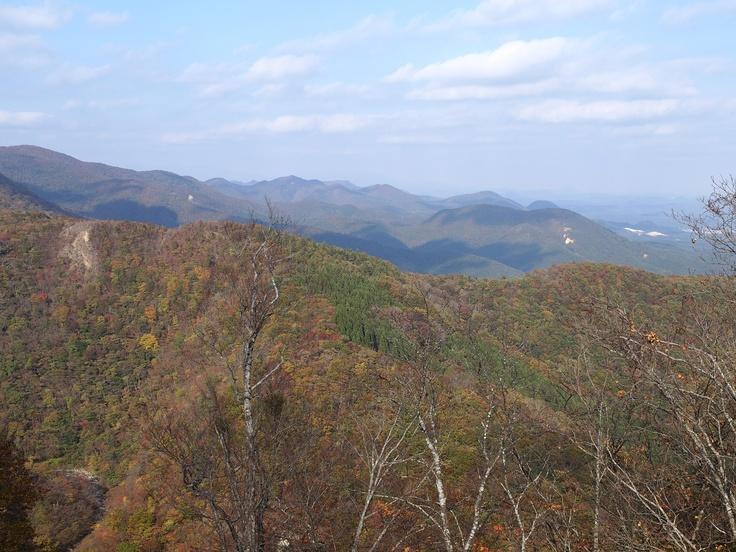 赤く色づく山の木々