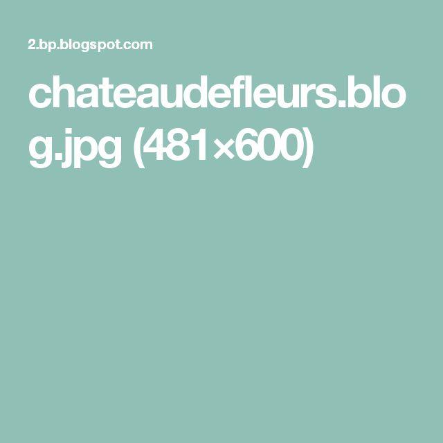 chateaudefleurs.blog.jpg (481×600)