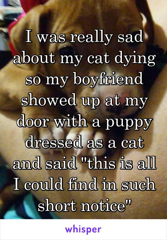 """I was really sad about my cat dying so my boyfriend showed up at my door with a puppy dressed as a cat and said """"this is all I could find in such short notice"""""""