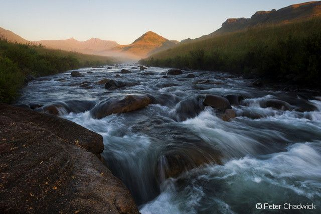 Only 8% of the land area of South Africa generates more than half of our river flow.  This 8% is made up of 21 strategic water source areas, which together with critical source areas in Lesotho and Swaziland (which hold another 4%), form our key water production areas. https://www.facebook.com/WWFSA/posts/10151702422859364