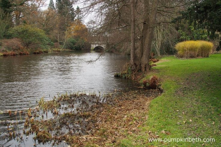 The Savill Garden, near Englefield Green, Windsor, as pictured in December.