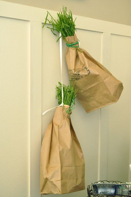 Drying Lavender - I love this paper bag idea!
