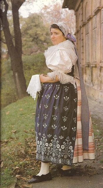 Indigo-print kroj from czechoslovakia. Source: Lidove umeni.