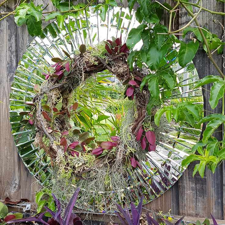 An unwanted mirror giving life and depth to our garden fence