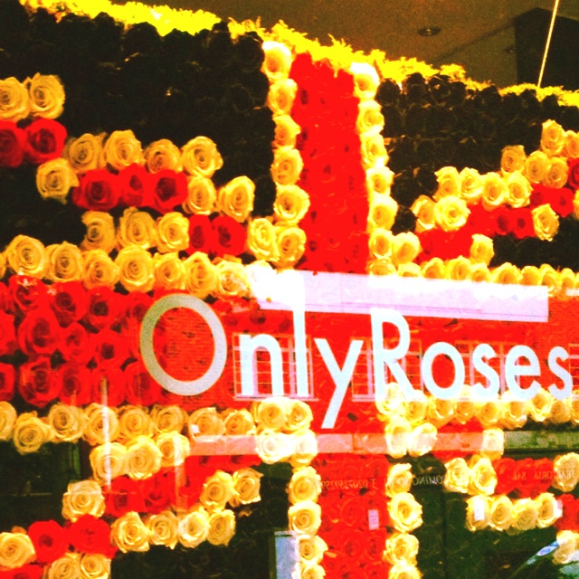 Only Roses!