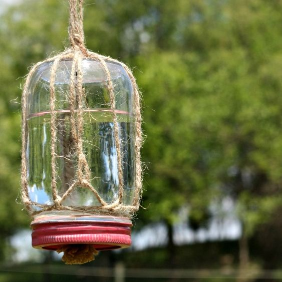 This simple DIY butterfly feeder makes a wonderful addition to any garden or flower bed. Records show that the numbers of butterflies, bees, and other pollinators are declining, so they really need our help! This simple feeder, made from a mason jar, some twine, and a piece of sponge, will help attr