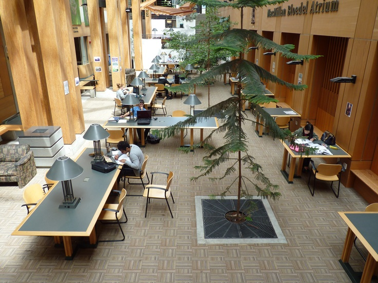 The Forestry building has some fantastic study spots with lots of natural light and high ceilings (if that's your thing).  There's also a Tim Horton's near by!