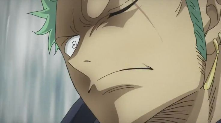 Roronoa Zolo / Roronoa Zoro --- from the first half of Heart of Gold