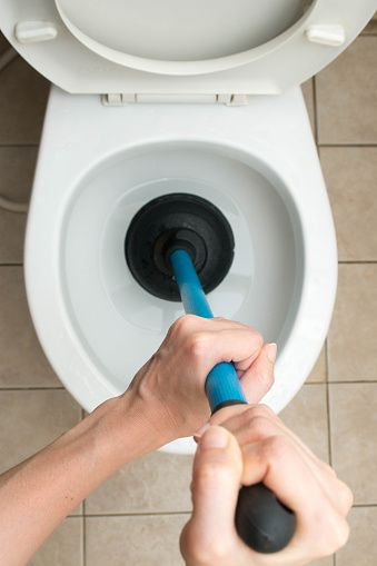1000  ideas about Clogged Toilet on Pinterest   Nearby laundromat  Craftsman household cleaning supplies and Roof of mouth sore. 1000  ideas about Clogged Toilet on Pinterest   Nearby laundromat