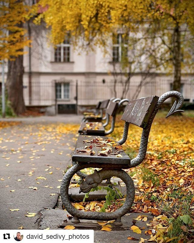 #Repost @david_sedivy_photos on Kampa Island Prague  The autumn details in Kampa. There are still places full of autumn in Prague. But I feel the snow comes soon #prague #prag #praga #praha #prahaeu #czech #czechrepublic #ceskarepublika #autumn #wonderfullprague #mcpraha1 #insta_prague #visitcz #instaprague #pragueworld #travelmore #fairytale #cz #lonelyplanet #toppraguephoto #canoncz #bestcitybreaks #cesko #ig_europa #praguestagram #davidsedivyphotos #travellingthroughtheworld…