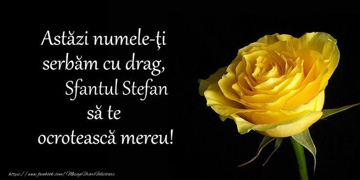 Astazi numele-ti serbam cu drag, Sfantul Stefan sa te  ocroteasca mereu!