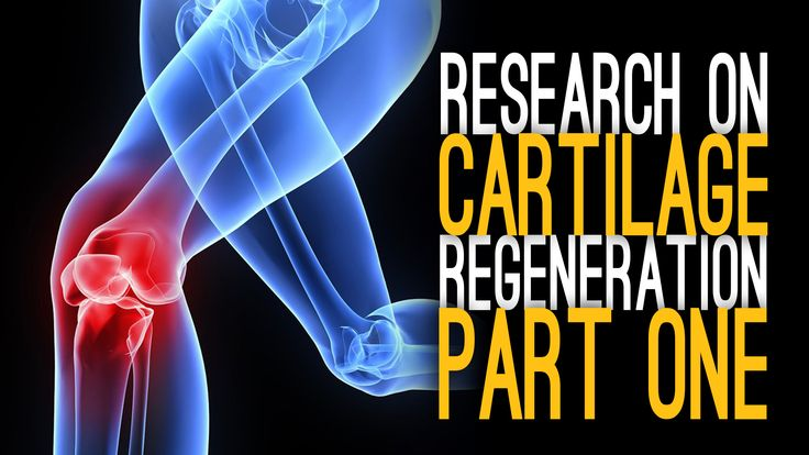 Dr. Li Zeng from Tufts University goes into detail explaining her research on cartilage regeneration, repair and development! See it here! http://www.curearthritis.org/cartilage-regeneration-zeng/