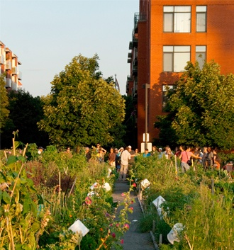 Pour leur première édition, Les Récoltes urbaines de Montréal prendront la forme d'un marché nocturne, le Marché de la brunante, un rassemblement festif qui réunira fermiers, jardiniers et chefs cuisiniers pour mettre en valeur les produits de l'agriculture urbaine montréalaise.  Au programme : kiosques , dégustation de produits frais cuisinés par des chefs et performance des DJs Phanton et Christofer Mac.   QUAND :  28/09 5pm  à 9pm  OÙ : SAT