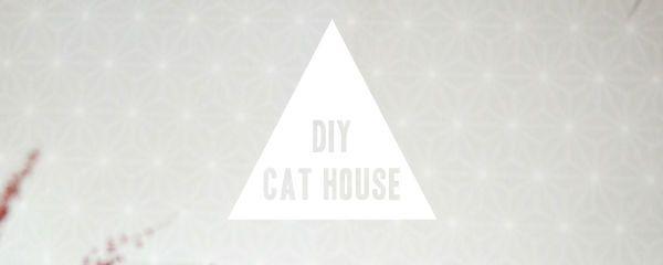DIY: maak van een kartonnen doos een kattenhuis