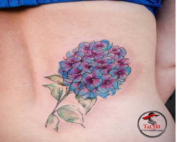 Hydrangea Tattoo For Romantic Women In 2020 Hydrangea Tattoo Tattoos Tattoo Designs