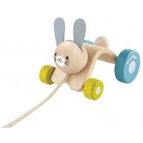 Zıplayan Tavşan (Hopping Rabbit)