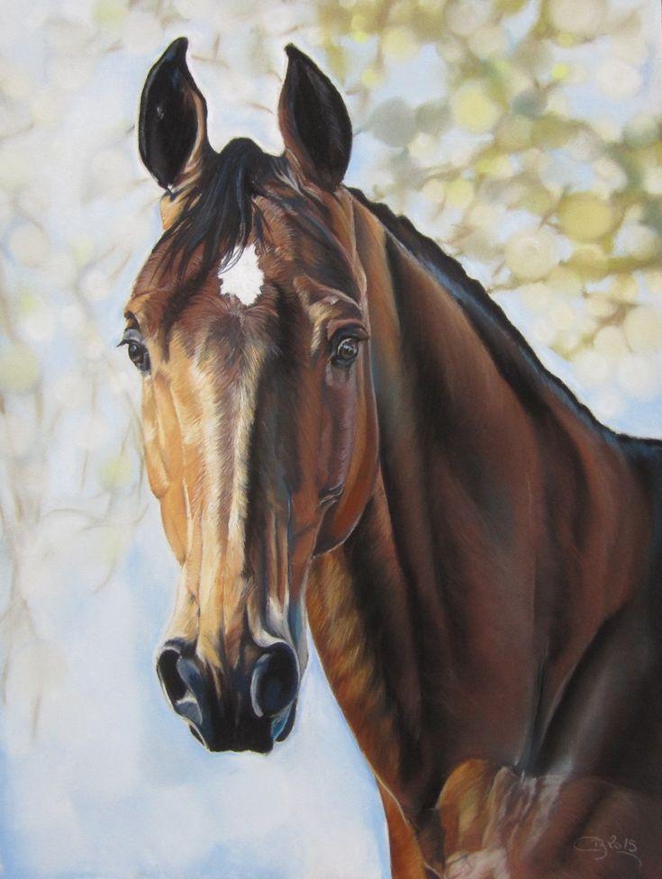 Dessins de chevaux et d'ânes réalisés aux pastels