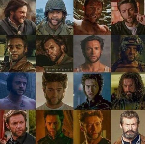 The only Wolverine