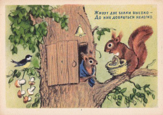 "Vintage Ushakova ""Two squirrels"" Postcard - 1954, Izogiz"