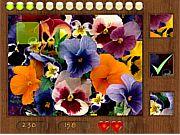 Играть в игру Parts of Picture:Flowers! Нажмите здесь и начните играть в Parts of Picture:Flowers бесплатно! Лучшие бесплатные игры из серии Parts of Picture:Flowers.