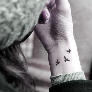 Little swallows birds