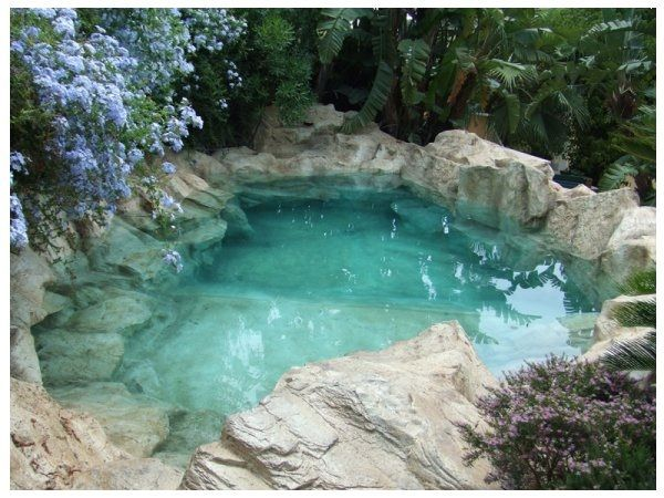 2967 best natural swimming pools ponds and water stuff for Estanques de peces ornamentales