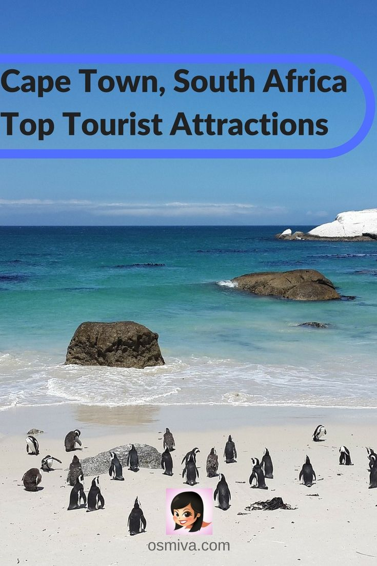 Here are Cape Town, South Africa Top Tourist Attractions to keep you updated with the latest popular must-see places in the city.