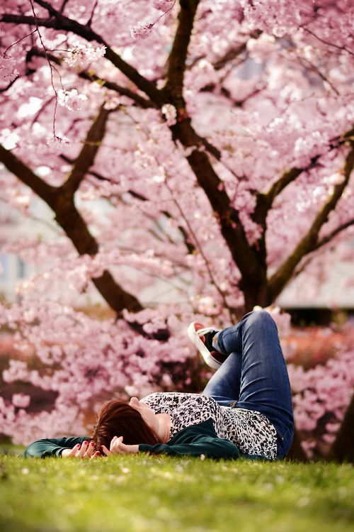 Sitting quietly, doing nothing, Spring comes, and the grass grows, by itself. ~Matsuo Bashō