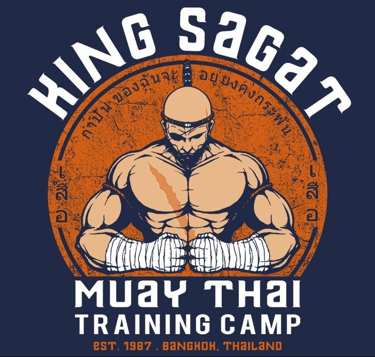 Muay Thai Camp T-Shirt $11 Street Fighter tee at RIPT today only!
