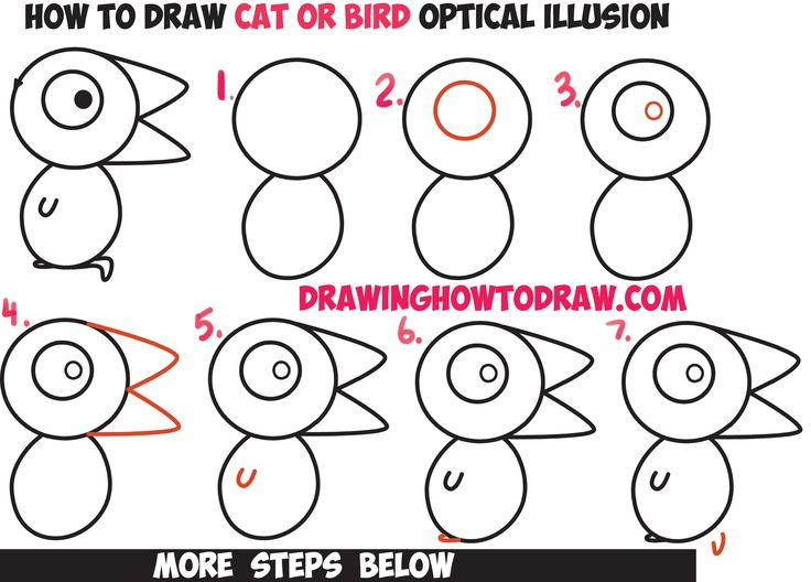 optical illusions for kids how to draw the is it a cat or is - Drawing For Small Children