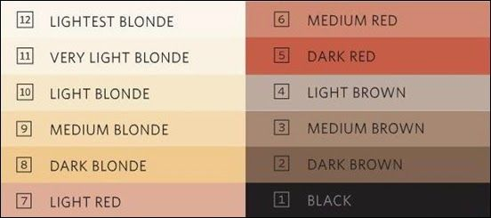 Color Scale For Perfect Hair Color Hair Colors