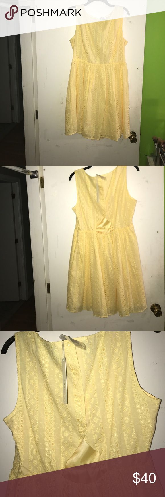 Lauren Conrad Yellow Dress Yellow dress with crochet detailing all around the dress. Small cut out in the back. Has 4 buttons and a zip up the side LC Lauren Conrad Dresses