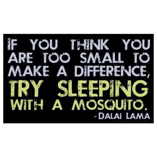 Funny But True Quotes: So Funny But True Quotes. QuotesGram