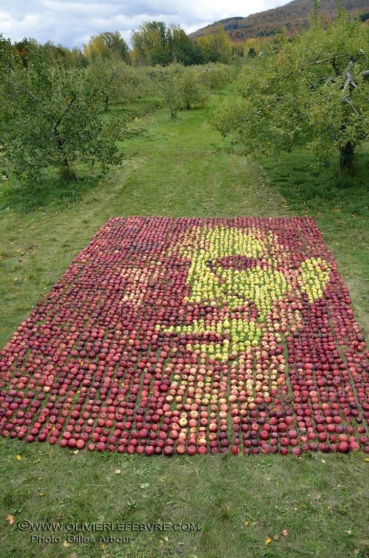 Steve Jobs portrait made with 3500 apples