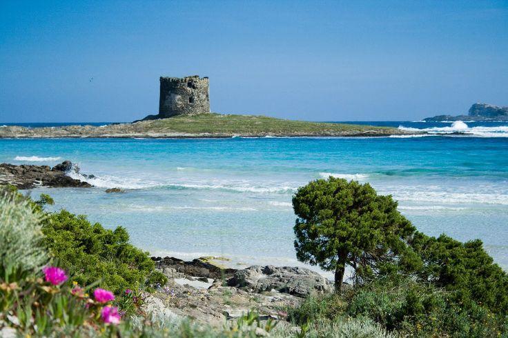 Santa Teresa Di Gallura, Sardinia.: Favorite Places, Sardinia Italy, Travel Inspiration, Sardinia Islands, Italia Il, Places I D, Sardini Stintino, Spiagg Italian, Class Vacations