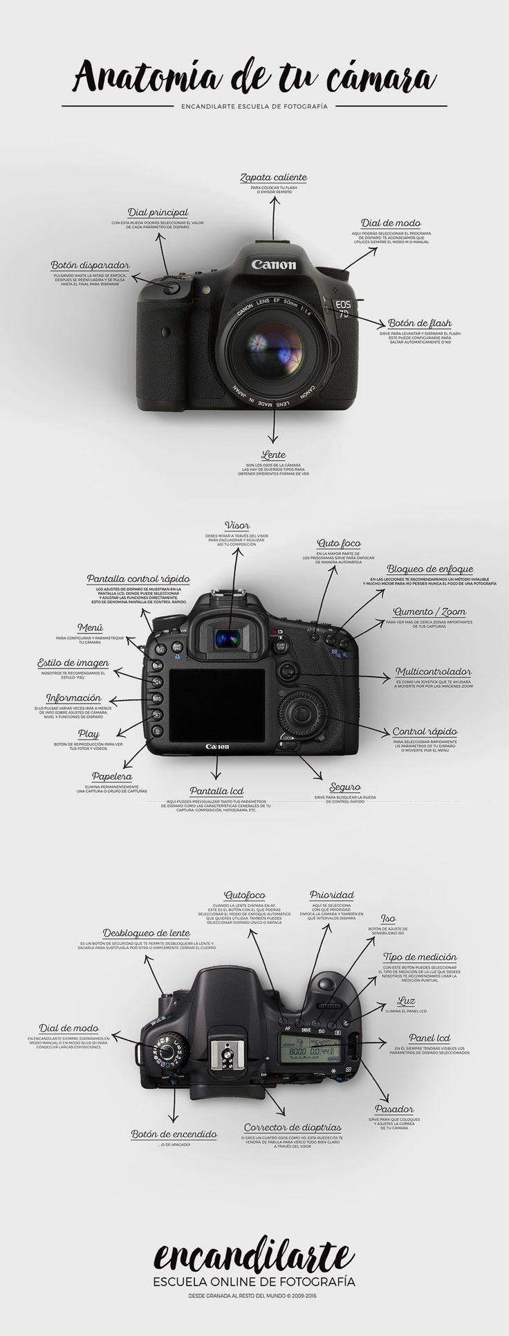 ENCANDILARTE Escuela Online de Fotografía  #canon #camara #fotografia #cursosfotografia #escuelafotografia